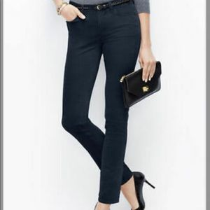 Ann Taylor Modern Fit Skinny
